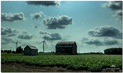 AUGUST 2018 NGM_8203_4844-1-222 (Nick and Karen Munroe) Tags: wind windturbines windturbine powergeneration ontariopowergeneration opg electricity farm farms barn country countryside rural farmers collingwood dundalk duntroon flesherton beavervalley shelbourne nottawa karenandnick munroe karenmunroe karen landscape ontario outdoors brampton bramptonontario ontariocanada nikon nickandkaren nickandkarenmunroe karenick23 karenick karenandnickmunroe nature canada nick d750 nikond750 munroedesigns photography munroephotoghrpahy nickmunroe munroedesignsphotography munroephotography munroenick landscapes beauty brilliant nikon2470f28 2470 2470f28 nikon2470 nikonf28 f28 colour colours color colors