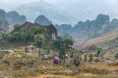 _J5K1964.0218.Lũng Phìn.Đồng Văn.Hà Giang. (hoanglongphoto) Tags: asia asian vietnam northvietnam northeastvietnam landscape scenery vietnamlandscape vietnamscenery vietnamscene hagianglandscape nature mountain mountainouslandscape valley flanksmountain topmountain sierra hdr trees canon canoneos1dsmarkiii canonef2470mmf28liiusm đôngbắc hàgiang đồngvăn lũngphìn phongcảnh phongcảnhhàgiang núi thunglũng dãynúi sườnnúi đỉnhnúi cây thiênnhiên thiênnhiênhàgiang people người landscapewithpeople phongcảnhcóngười