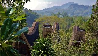 INDONESIEN; SULAWESI, Tanah Toraja, 17595/10603