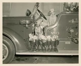 Dalmatian Pups in Boots on Engine No. 13