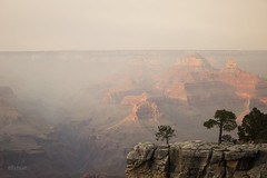 Grand Canyon's silence (Elishue [~Eli~]) Tags: grandcanyon canyon arizona views scenery landscape