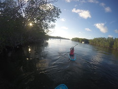 Locals Paddle Sept 5 (Jen.Ostrander) Tags: sup ptfk tavernier thekeys floridakeys