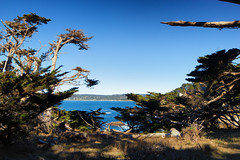 NorCal Travels 2018-25 (Maggie Houtz) Tags: norcal horizon pointlobos