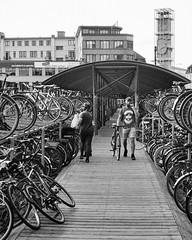 Aarhus (Bicycle) Station (auqanaj) Tags: kodakgold200 olympus35rc cewescanat72dpi 20180815 street strase film analog denmark dänemark aarhus bikes bicycles fahrräder fahrrad rathausturm city aarhuscityhall ostsee hafenstadt fahrradfahrer fusgänger hauptbahnhof centralstation bikeracks monochrome blackandwhite schwarzweis