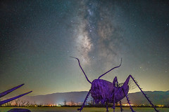 DSC00064 (KayOne73) Tags: galleta meadows anza borrego springs ca desert park night astrophotography art sculptures milky way sky stars sony a7riii rokinon samyang 35mm f 14 prime lens ricardo breceda