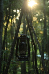 Mississippi Camp Lantern (_Lionel_08) Tags: mississippi camping trees tree canon rebel xsi 75300mm sunrise sun green forest lantern oil lamp