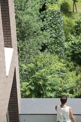 Terrasses du Pôle des Langues et Civilisations (gip-bulac) Tags: plante terrasse poledeslanguesetcivilisations gregoiremaisonneuve bulac brique batiment paris france
