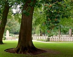 Dutch military cemetery WW2 at the Grebbeberg near Rhenen / begraafplaats van Nederlandse militairen in de 2e Wereldoorlog (ronaldort1311) Tags: ww2 grebbeberg military cemetery begraafplaats