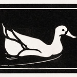 Swimming duck (1923 - 1924) by Julie de Graag (1877-1924). Original from the Rijks Museum. Digitally enhanced by rawpixel. thumbnail
