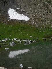 Rando 2018 (85) (Mark Konick) Tags: alpen alpes alpi alps backpacking bergsee bergtour bergwandern bivouac gebirge hiking lac lago lake markkonick montagnes mountains nathaliedeligeon randonnée trekking wandern italy italie italia italien france francia frankreich bouquetin ibex cabramontés stambecco steinbock chamois camoscio gamuza rebeco gams gämse gemse gämsbock gemsbock moutons sheep vaches vacas kühe mucche vacche cows cascade chuted'eau waterfall wasserfall cascata cascada saltodeagua