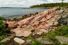 Craggy ({Brinkervelt}) Tags: maine mtdesertisland shipharbor acadia ocean sea shore coast rocks rocky beautiful trees landscape seascape