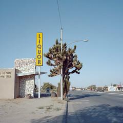 liquor. yucca valley, ca. 2018. (eyetwist) Tags: eyetwistkevinballuff eyetwist liquor yuccavalley mojavedesert mamiya 6mf 50mm kodak portra 160 mamiya6mf mamiya50mmf4l kodakportra160 ishootfilm analog analogue film emulsion mamiya6 square 6x6 120 filmexif epsonv750pro ishootkodak 6 mojave desert california highdesert landscape mediumformat roadside america americana typology iconla signgeeks type typography americantypologies joshuatree yucca valley store booze twentyninepalms joshua tree morongo