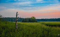 Meadow's Morning (jgaosb) Tags: west meadow wetlands reserve sunrise