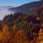 goldene Zeiten im Schwarzwald thumbnail
