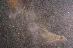Corona Australis and Surroundings with Sigma 105mmF1.4DG HSM Art August 2018 (hirocun) Tags: astrometrydotnet:id=nova2772437 astrometrydotnet:status=solved