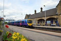It's springtime at Mexborough as185107 passes through with the 1B74 Manchester Airport to Cleethorpes, 1st May 2015. (Dave Wragg) Tags: 185107 class185 tpe firsttranspennineexpress dmu desiro railcar 1b74 mexborough railway