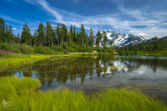 Picture Lake Panorama (RobertCross1 (off and on)) Tags: a7rii alpha cascaderange cascades emount fe1635mmf4zaoss ilce7rm2 mountbaker mountshuksan mtbakersnoqualmienationalforest nationalforest northcascades northcascadesnationalpark pacificnorthwest picturelake sony wa washington whatcom bluesky clouds fireweed flowers forest fullframe glacier grass lake landscape mirrorless mountain nature reflection snow trees water wideangle wildflowers