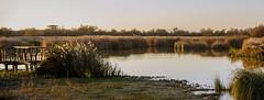 observatorio de fauna Parque Nacional de las Tablas de Daimiel Ciudad Real panoramica 02 (Rafael Gomez - http://micamara.es) Tags: observatorio de fauna parque nacional las tablas daimiel ciudad real panoramica