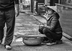 Street Portrait - Most people want fast car, big house and a lots of money, others just need to feed their kids. (Louay Henry.) Tags: nikond610 d610 nikonaustralia nikon nikonportrait citylife monochrome poor blackandwhite outdoor blackwhite people streetphotography candid streetportraiture portrait streetportrait portraiture candidportrait vietnam character strangers naturallight hardlife woman poorwoman tamron2470mmf28 tamron2470mm tamron streetcandid humanbeing