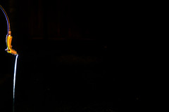 who left the hose on? (pbo31) Tags: bayarea california night dark black color nikon d810 september 2018 summer boury pbo31 lightstream motion hose yard water blur pleasanton livermore eastbay alamedacounty garden drip wet drain soaked