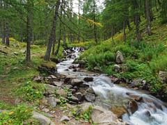 2018-09-16_9161777 © Sylvain Collet_DxO.jpg (sylvain.collet) Tags: france wild cascade nature mountains waterfall alpesdehauteprovence colmarslesalpes lacdallos montagne