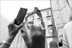 (In Gennaro We Trust) (Robbie McIntosh) Tags: leicam9p leica m9p rangefinder streetphotography 35mm leicam autaut candid strangers leicaelmarit28mmf28iii elmarit28mmf28iii elmarit 28mm man woman flash shutterdrag draggingtheshutter blackandwhite monochrome bw miracle sangennaro blood religion