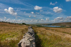 _DSC.0073 - Clowbridge Reservoir, Dunnockshaw (SWJuk) Tags: swjuk uk unitedkingdom gb britain england lancashire burnley home crownpoint clowbridgereservoir reservoir water landscape scenery moors moorland grasses drystonewalls trees bluesky sky skies clouds wideangle vanishingpoint 2018 aug2018 summer nikon d90 nikond90 tokina1116mm rawnef lightroomclassiccc