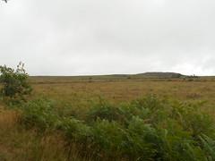 DSCN5610 (norwin_galdiar) Tags: bretagne brittany breizh finistere monts darrée nature landscape paysage