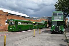 Seems Like Old Times (davidvines1) Tags: bus rt rf doubledecker singledecker londontransport londoncountry greenline garston garage arriva