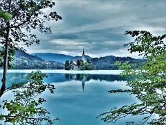 Castel on Lake Bled , Slovenia (sebas.herm) Tags: bled lakebled gorenjska slovenia slovenija sloveniatrip ifeelslovenia slovenialovers landscape landscapephotography castle castlebled lake lac eau paysage calme château water