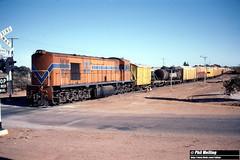 3664 RA1913 departing Wyalkatchem for Mukinbudin 20 May 1983 (RailWA) Tags: railwa philmelling westrail 1983 ra1913 wyalkatchem