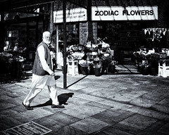 Zodiac Flowers (JEFF CARR IMAGES) Tags: northwestengland rochdale greatermanchester towncentres