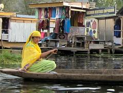 INDIA Kashmir Srinagar, Lake Dal (Suriaa) Tags: india kashmir srinagar lake dal