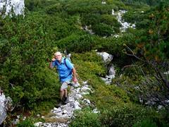 Ferry am Weg auf den Sandling / Ferry on the way to Sandling (rudi_valtiner) Tags: sandling berg mountain klettersteig viaferrata latschen creepingpines mountainpines salzkammergut steiermark styria ausseerland österreich austria autriche totesgebirge alpen alps ferry mann man altaussee salzberg