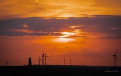 Sonnenuntergang auf der Halde (moni-h) Tags: august2018 deutschland halde haldenorddeutschland nrw neukirchenvluyn niedrrhein olympusm12100mmf40pro olympusomdem1markii ruhgebiet nordrheinwestfalen de sonnenuntergang windräder