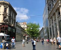 Serbia (Belgrade) Knez Mihailova, Main street and pedestrian zone (ustung) Tags: daily pedestrian knezmihailova street main belgrade serbia