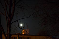 Moon vs. Mars, Saturn & Nunki / @ 55 mm / 2018-04-08 (astrofreak81) Tags: mars saturn nunki σsagittarii moon luna mond planet stars tree light night sky dark konjunktion konstellation dresden 20180408 sylviomüller sylvio müller astrofreak81