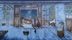 307 Sheffield, town of murals (Brigitte & Heinz) Tags: australia australien australie sheffieldmurals townofmurals tasmanien tasmania tasmanie