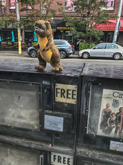 Free T Rex (zenseas) Tags: tyrannosaurus toy busstop seattle queenanne funny urban endofsummer trex spontaneous stuffedtoy found foundart foundobject free bostonstreet newstand explore explored