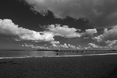 Stralsund / Devin (tom-schulz) Tags: eosm3 efs1018mm monochrom bw sw rawtherapee stralsund thomasschulz strelasund anlegestelle himmel wolken wasser horizont person wide