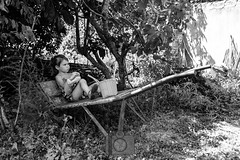 Lily - Rose   garden (fred bmx mairet) Tags: exterieur outdoor brouette nature fille girl enfant childness child enfance southoffrance sud france jardin noiretblanc blackandwhite garden