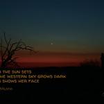261/365 - Daily Haiku: Venus thumbnail