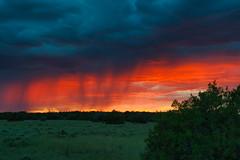 Monsoon raging as the sun sets! (Jen Eisenbraun-Long) Tags: clouds redskies arizonamonsoons northeastarizona landscapes nature sunsets storms monsoon rain beautifulsky fierysky dramaticskies moodyskies horizon dusk