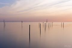 Sunrise Serenity (Johan Konz) Tags: sunrise mood fishingpole water waterscape seascape edam markermeer netherlands outdoor le longexposure nikon d7500 sea sky pastel pink reflection light cloud serenity bird