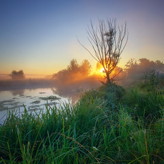 Morning on the river (tulbanov) Tags: landscape nature light ukraine sunlitgh summer canon morning mist meadow fog sunset sunrise