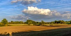 My local landscape (Peter Leigh50) Tags: leicestershire landscape landschaft wistow fujifilm fuji field farmland farm farming sheep hedge fence gate house sky clouds skyscape sunshine sunlight sunny shadows shade xt2 rural colour countyside