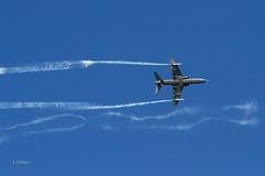 IMG_5304@L6 (Logan-26) Tags: british aerospace hawk 51a hw352 cn 3124014085f002 finland air force tartu estonian aviation museum estonia days 2018
