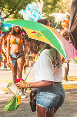 1364_0641FL (davidben33) Tags: brooklyn new york labor day caribbean parade festival music dance joy costume maskara people women men boy girls street photos nikon nikkor portrait