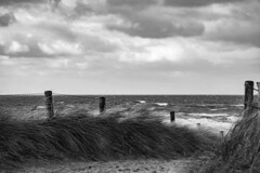 strong (Wöwwesch) Tags: ocean waves seascape windy cold strong walk lonely blackwhite autumn silence