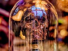 skull duggery (Mallybee) Tags: mirrorless m43 g9 dcg9 panasonic lumix f17 425mm mallybee head curiosity haworth dome skull colourful bokeh